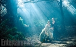 Into the Woods, movie, musical, photo, Meryl Streep, Anna Kendrick, Emily Blunt, Disney, Sondheim