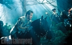 Into the Woods, movie, musical, photo, Meryl Streep, Disney, Sondheim, Chris Pine